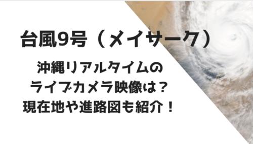 台風9号メイサークのライブカメラ永映像を紹介