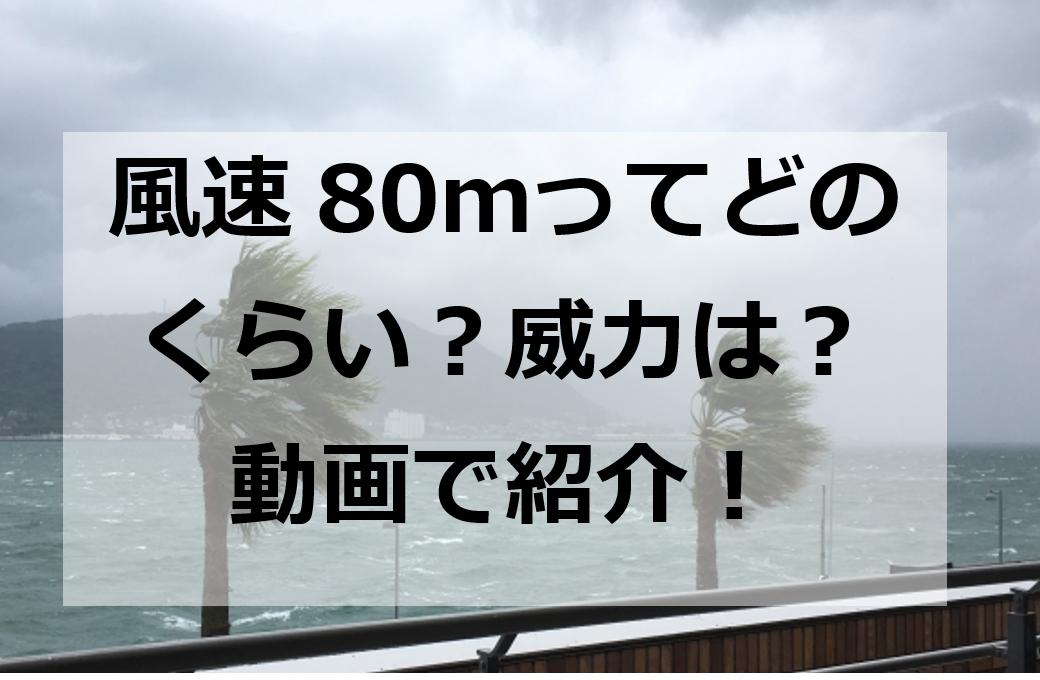 風速80mどのくらい?