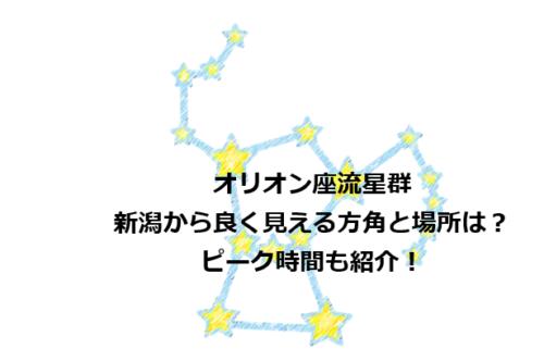 オリオン座流星群が新潟から良く見える方角は?