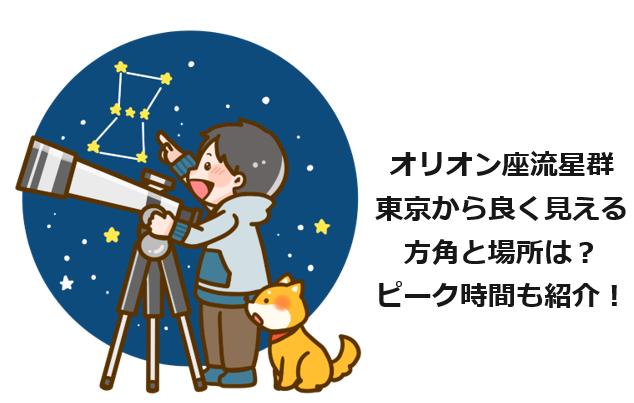 オリオン座流星群東京から良く見える方角と場所はどこ?ピーク時間も紹介