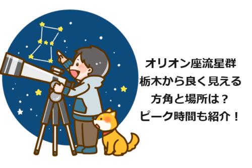 オリオン座流星群が栃木から良く見える方角や場所は?ピーク時間も紹介