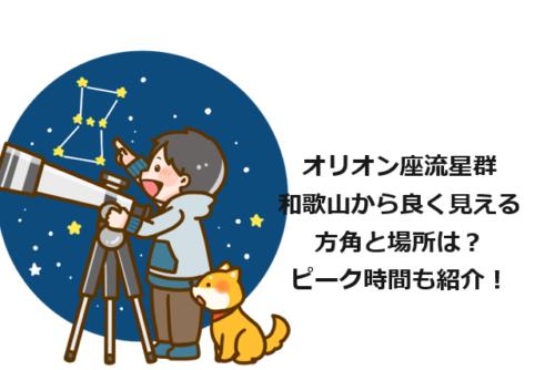 オリオン座流星群和歌山で良く見える方角と場所は?