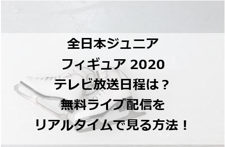 全日本ジュニアフィギュアテレビ放送は?