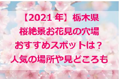 栃木の花見穴場スポット